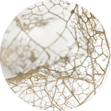 Leaf skeleton | CIRCLE ART