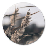 Mellow Grasses 3 | CIRCLE ART