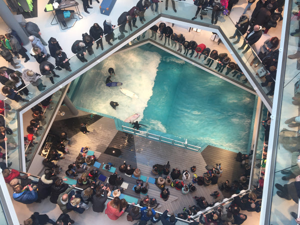 Wave pool standing wave inside shopping mall