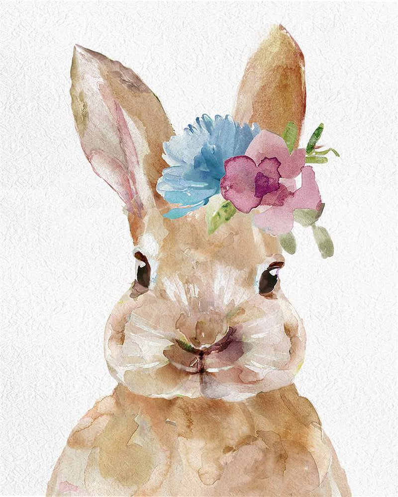 Canva  lapin