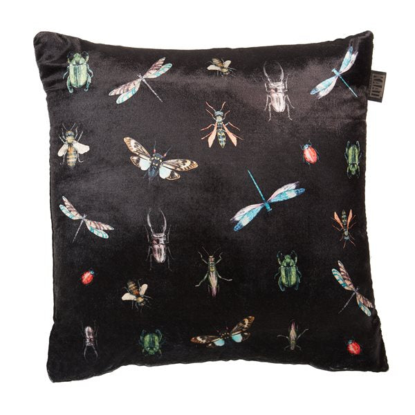 Coussin Insects