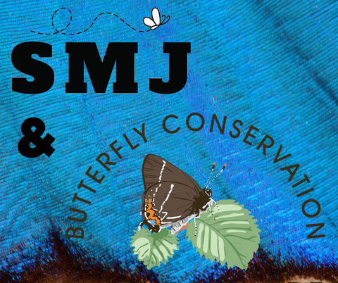 SMJ Guitar Accessories Now Officially Recognised As Sponsor Of Butterfly Conservation
