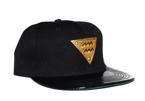 The 'Aquarius' Gold Plate Snapback