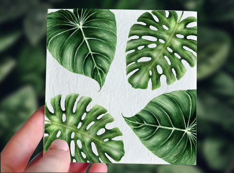 Tropic Plain Gift Card