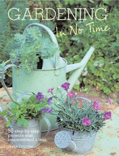 Gardening in No Time: 50 Step-by-step Projects and Inspirational Ideas