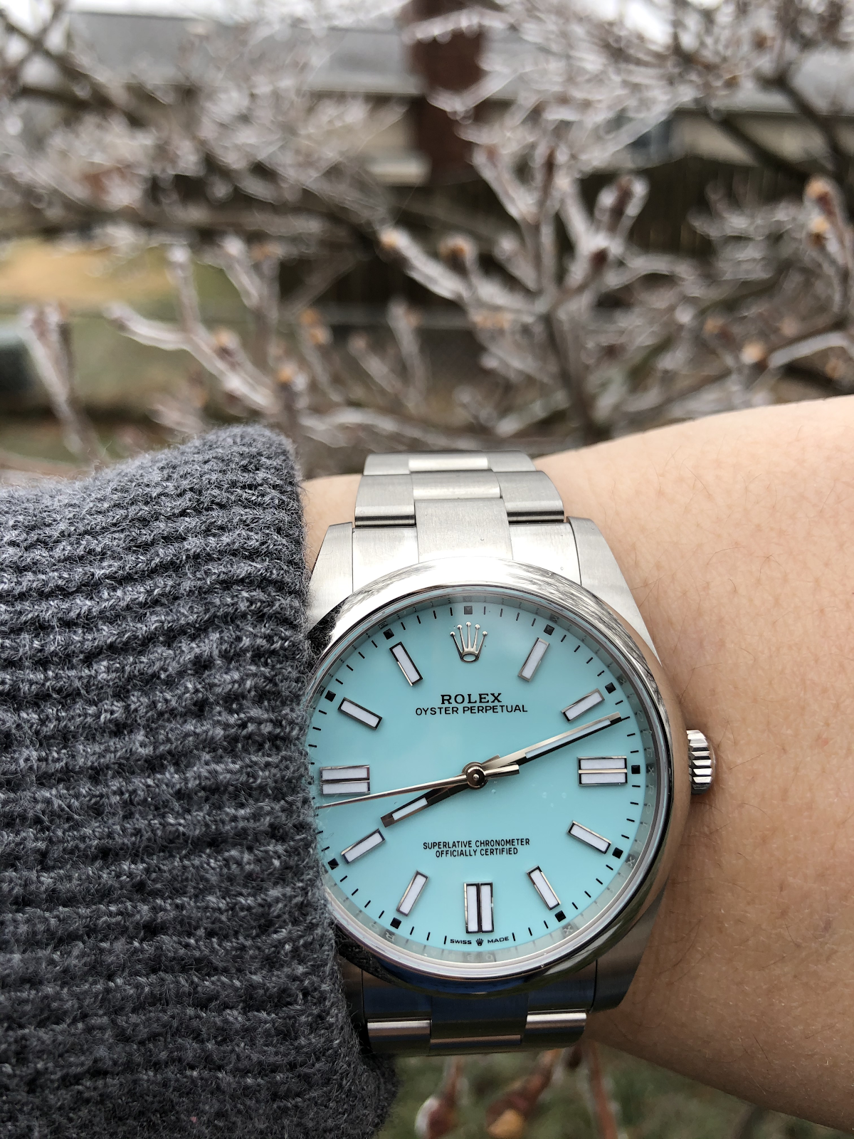 rolex op41 in turquoise blue with snowy background