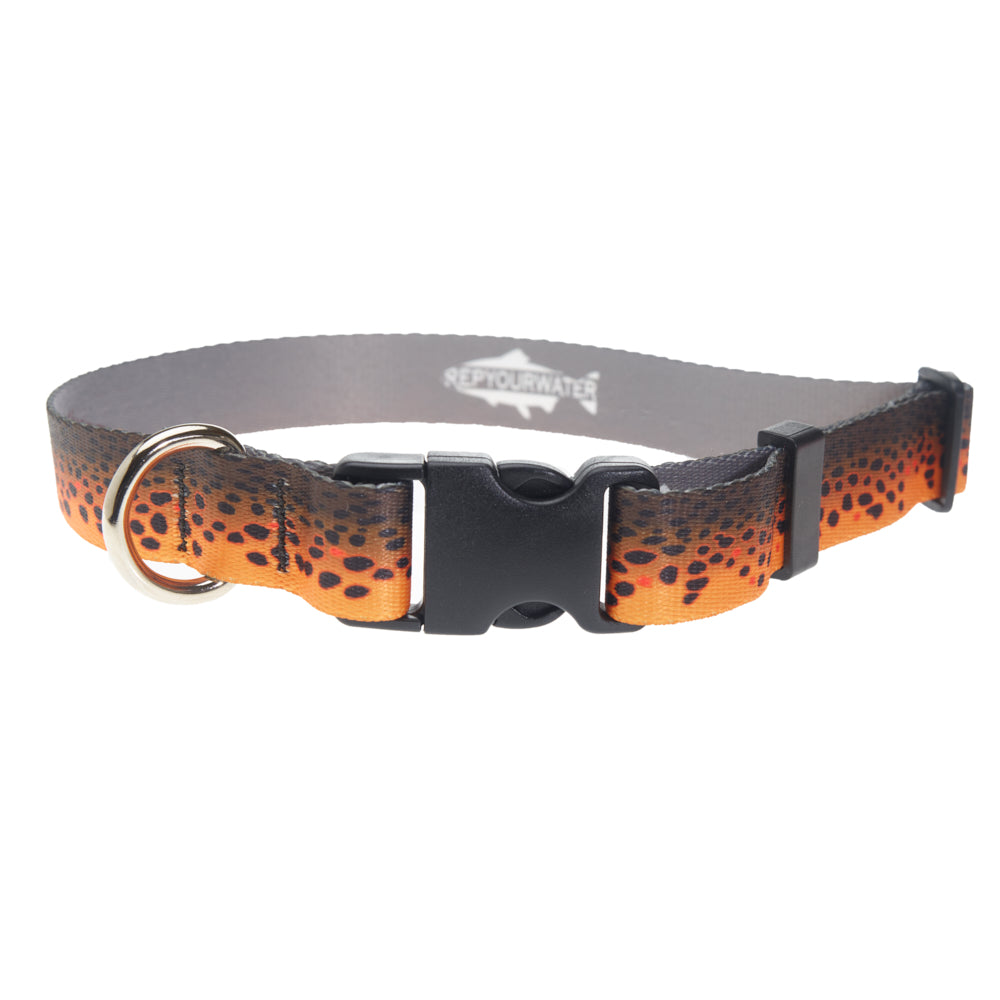 Brown Trout Dog Collar