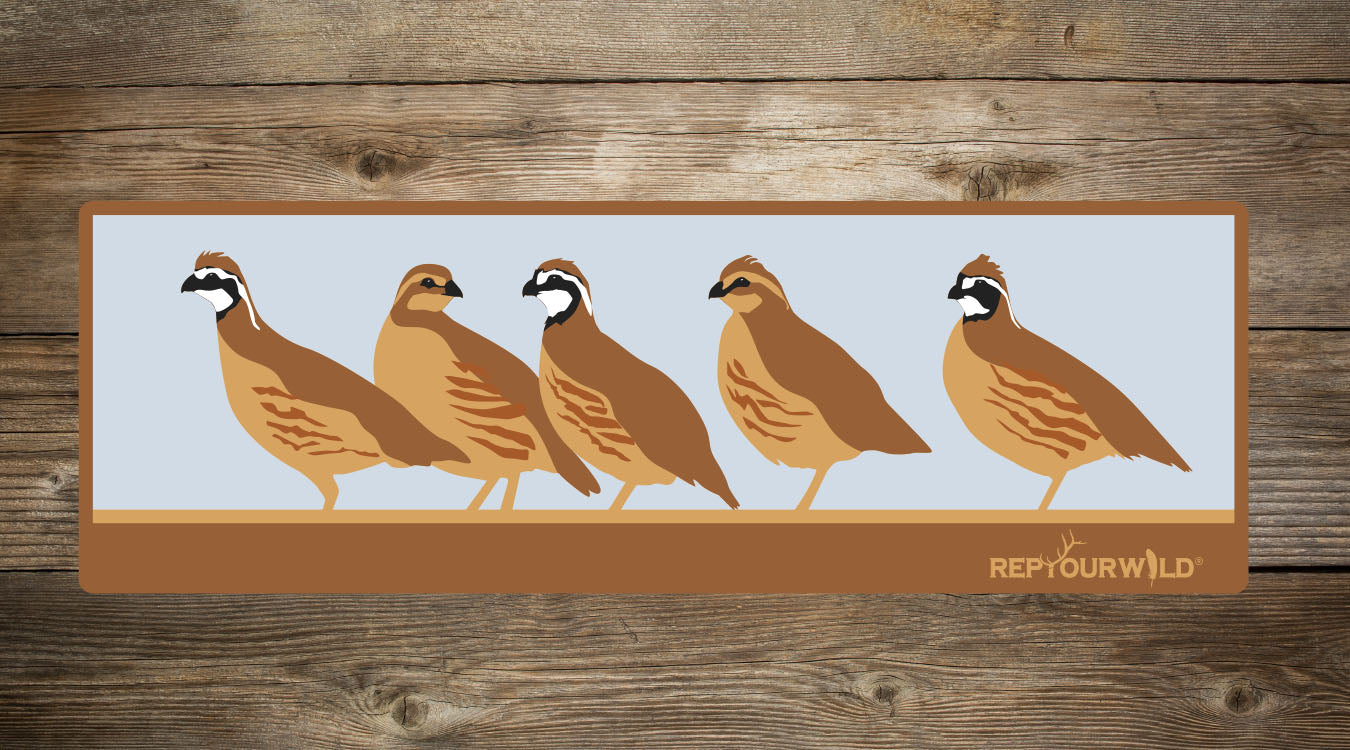 Covey of Quail Sticker