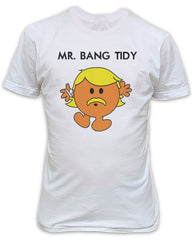 Mr Bang Tidy