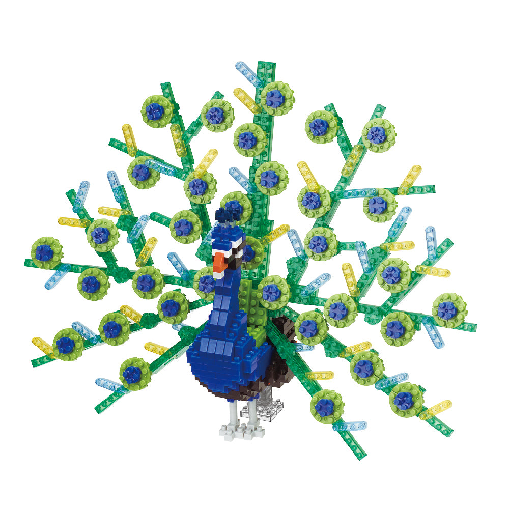 Peacock Animal Challenger