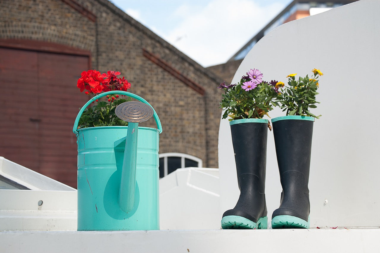 6 items you can recycle and turn into gardening products