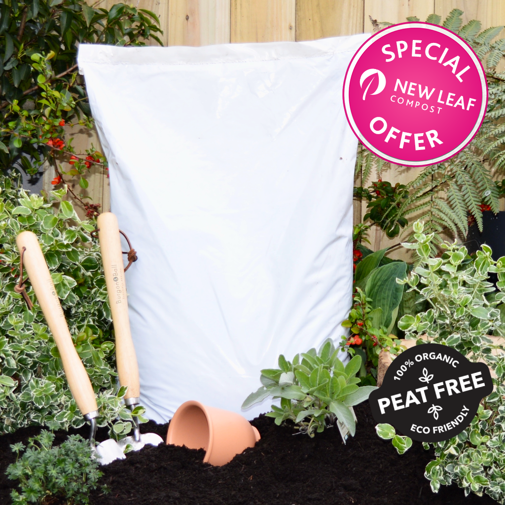 SPECIAL OFFER | 40 Litre Bag of New Leaf Compost