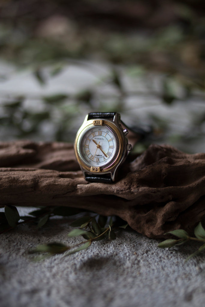 True Vintage: Fossil Gleam