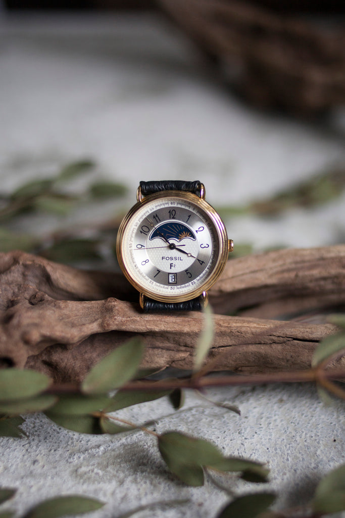 True Vintage: Fossil Galaxy