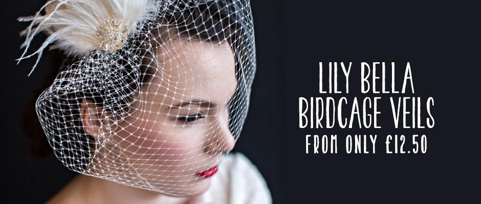 https://lilybella.co.uk/collections/birdcage-veils