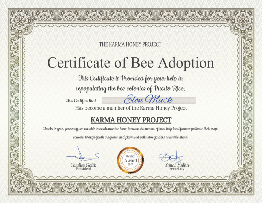 bee adoption certificate elon musk