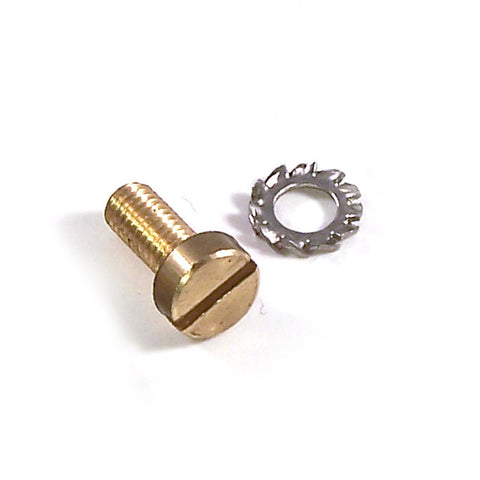 Pasquini Steam/Hot Water Knob Screw & Washer