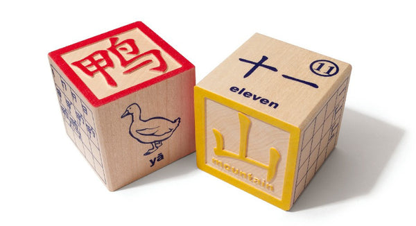 Chinese Language Blocks Set