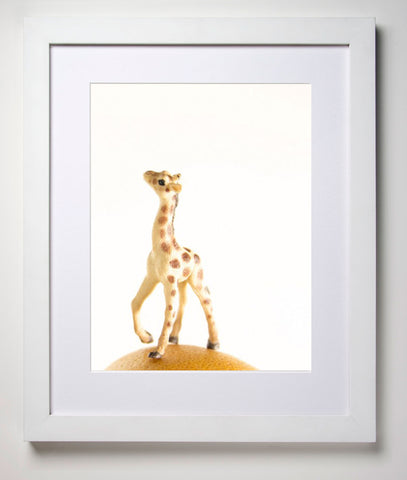 Grapefruit the Giraffe by Matthew Carden