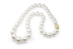10mm - 14mm South Sea Pearl Necklace On 9ct Yellow Gold Clasp