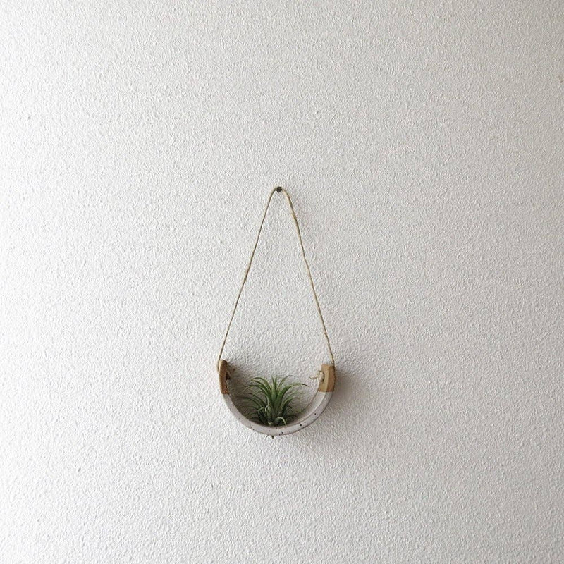 Small Speckled Hanging Air Plant Cradle