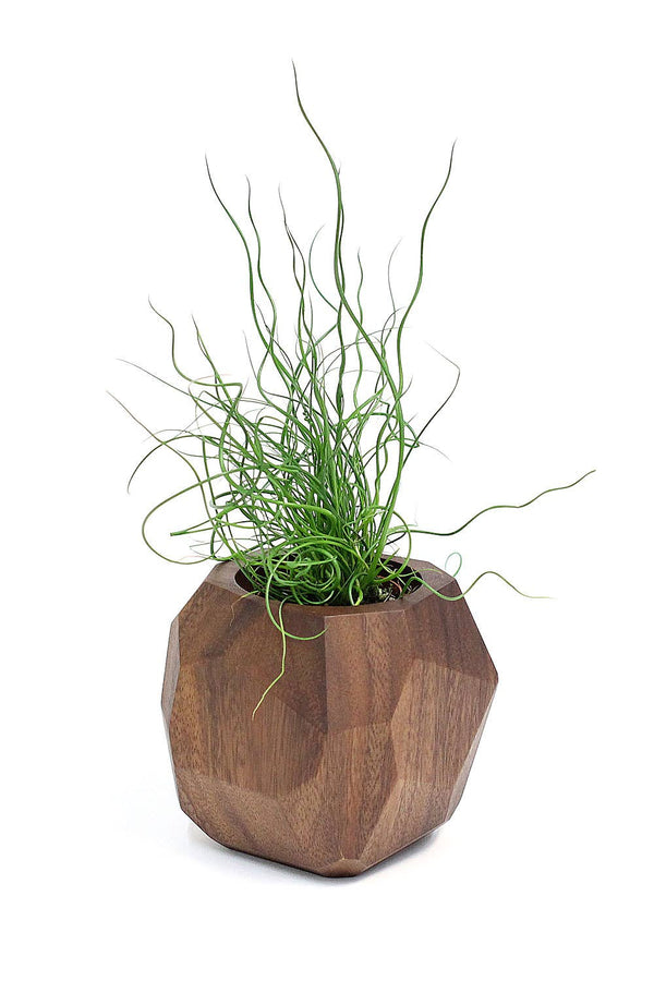 Soul of the Party - Geometric Wooden Planter