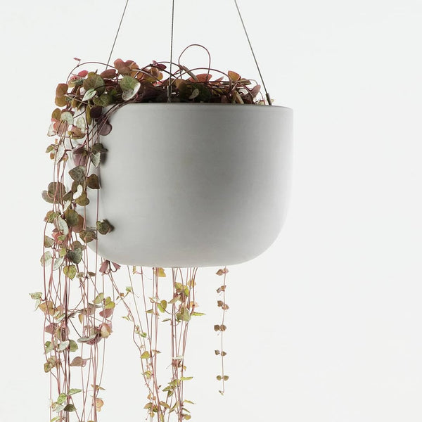 Raw Earth Siltstone Hanging Grey Planter