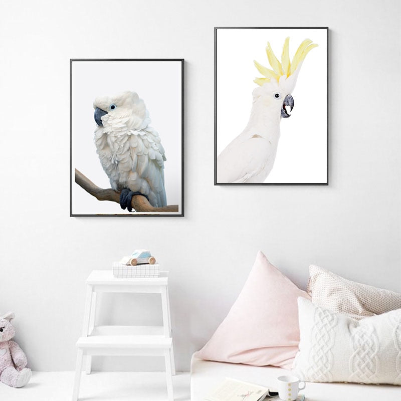Blue-Eye-Outline-or-Sulfur-Crested-Cockatoo-Canvas-Art-1