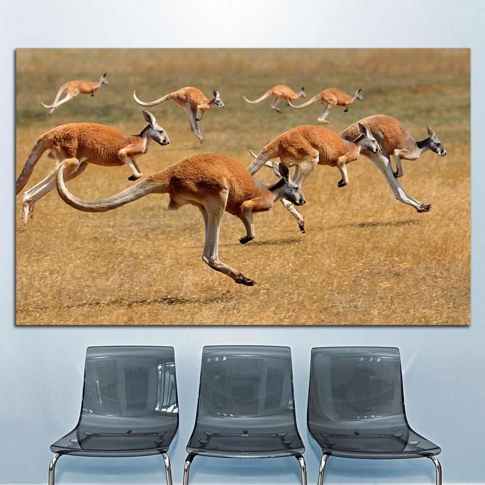Hopping-Kangaroos-across-Grassland-Canvas-Wall-Art-1