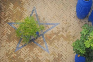 blue-star-in-courtyard-small