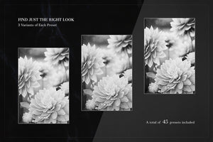 Artist's Amazing Preset Collection (Black & White Edition)