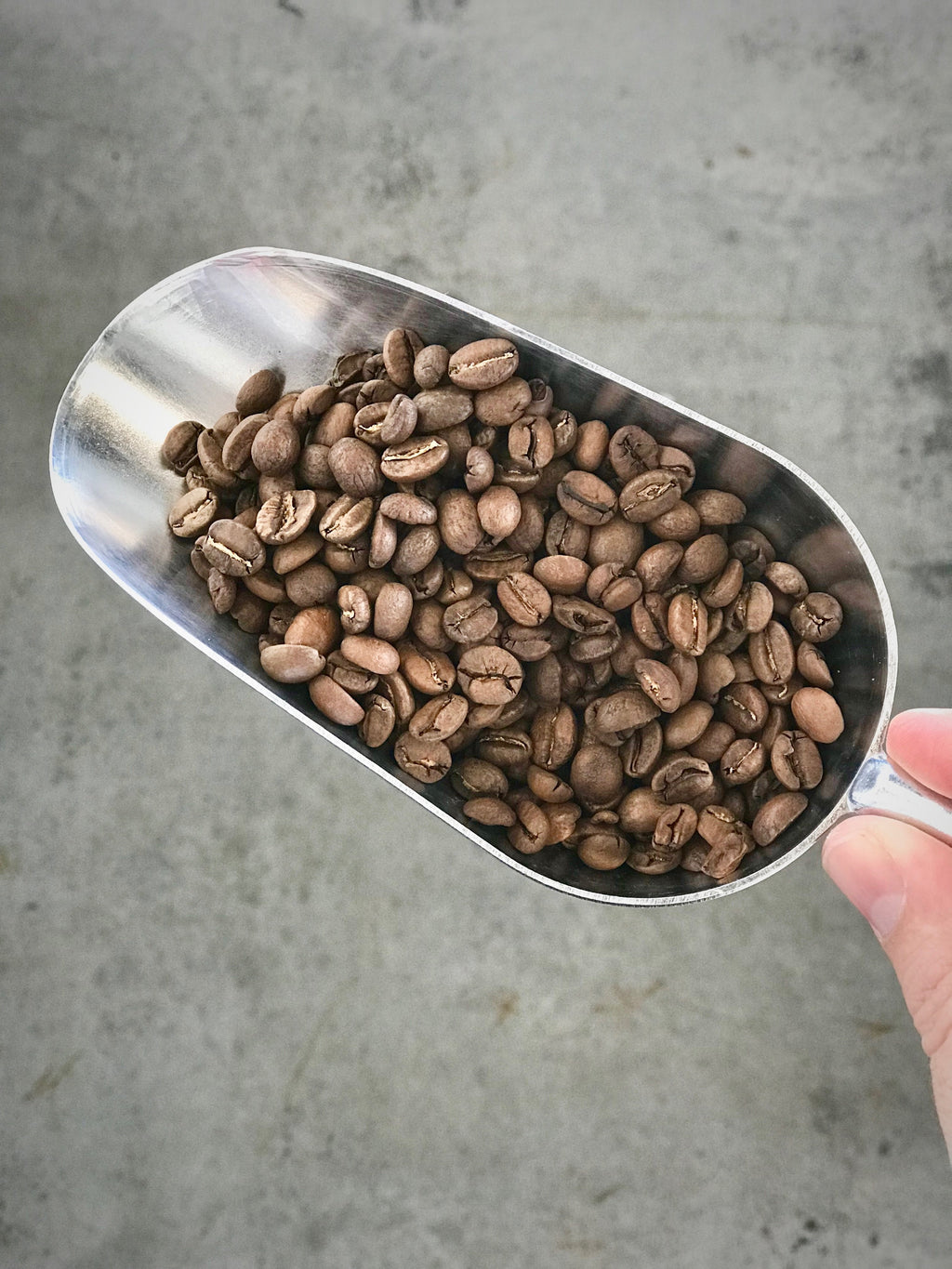 Eighthirty Beans, The Eighthirty Standard - Refill Nation