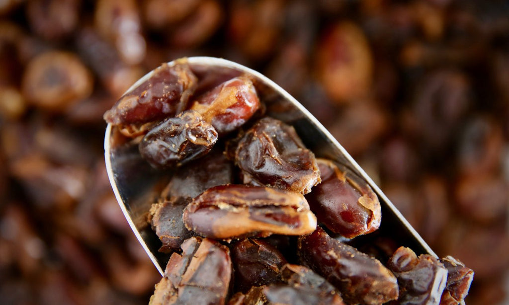 Organic Pitted Dates - Refill Nation