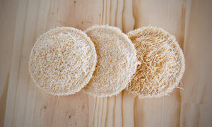 Biodegradable Scrub Pads - Refill Nation