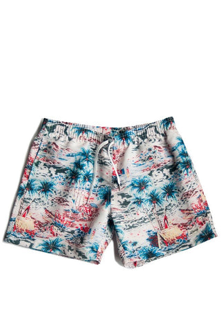 Bather Boardshorts Daytime Hawaii