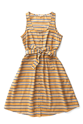 Aletta Gold Stripe