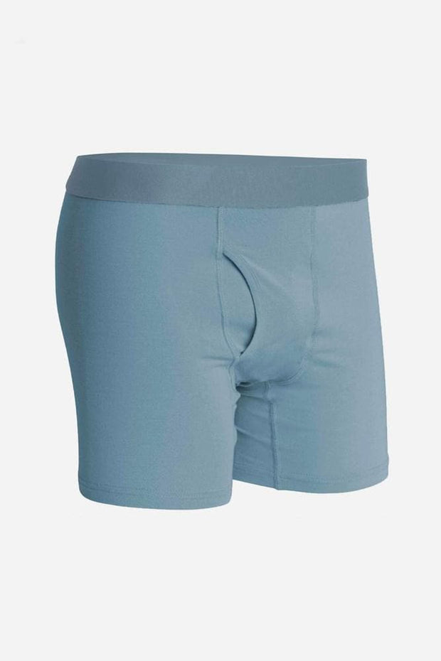 Richer Poorer Lewis Boxer Brief Blue Mirage