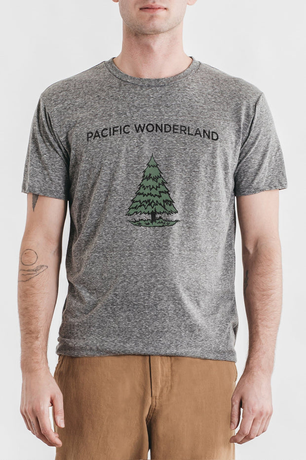Men's Pacific Wonderland Grey