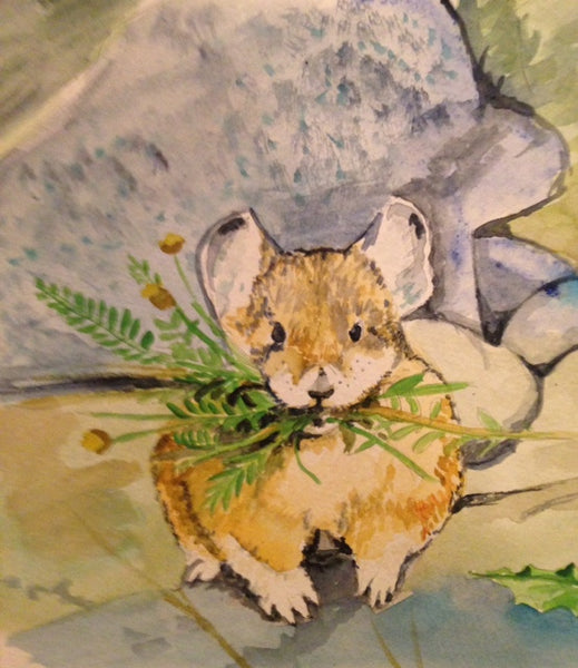 Molly and the Tale of the American Pikas
