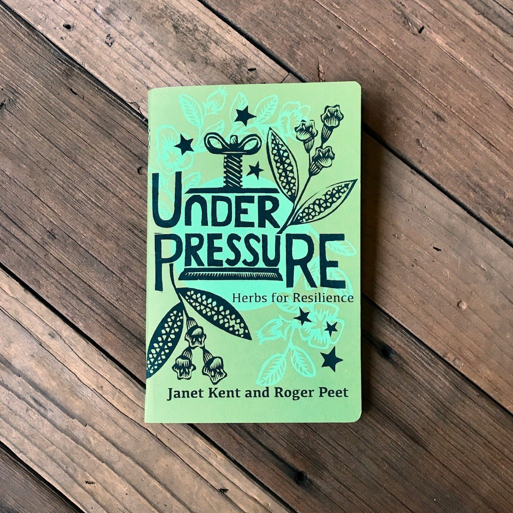 Under Pressure Zine by Janet Kent