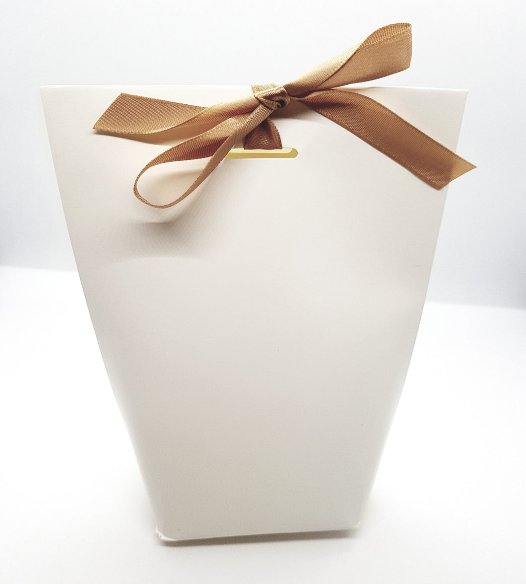 White Cardboard Bag with Bronze Ribbon