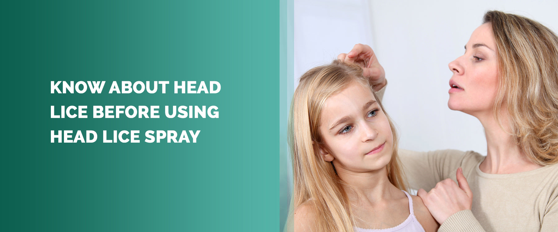 Know About Head Lice Before Using Head Lice Spray