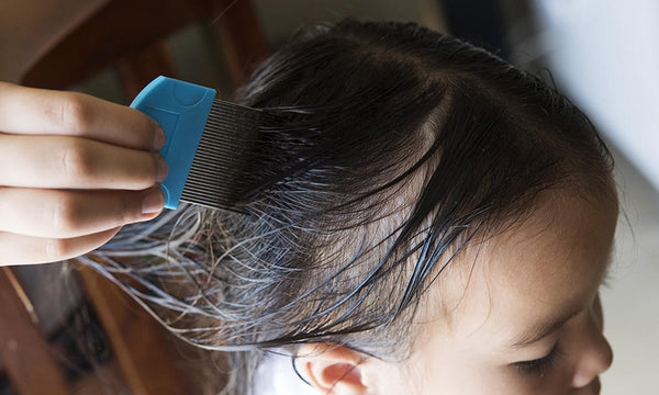 Head lice can survive in water
