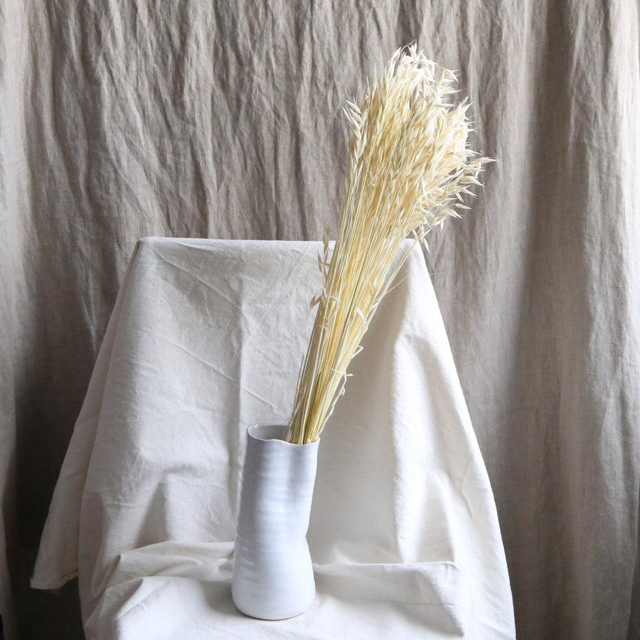 A bunch of dried white avena stems available at Rook & Rose