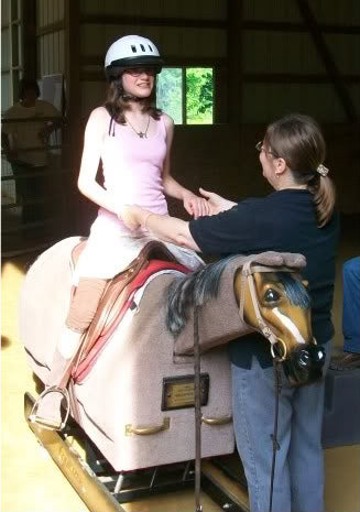 Equicizer Therapy Mechanical Horse Riding Simulator