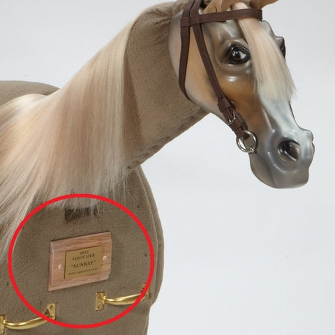 Equicizer - Engraved Name Plates