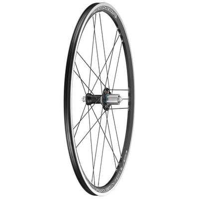 Campagnolo Components > Factory Wheels Campagnolo Zonda C17 Rear Wheel
