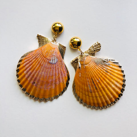SEASHELL - orange