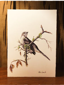 Notecards - Mockingbird