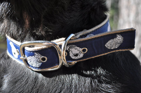 Blue Oyster Dog Collars